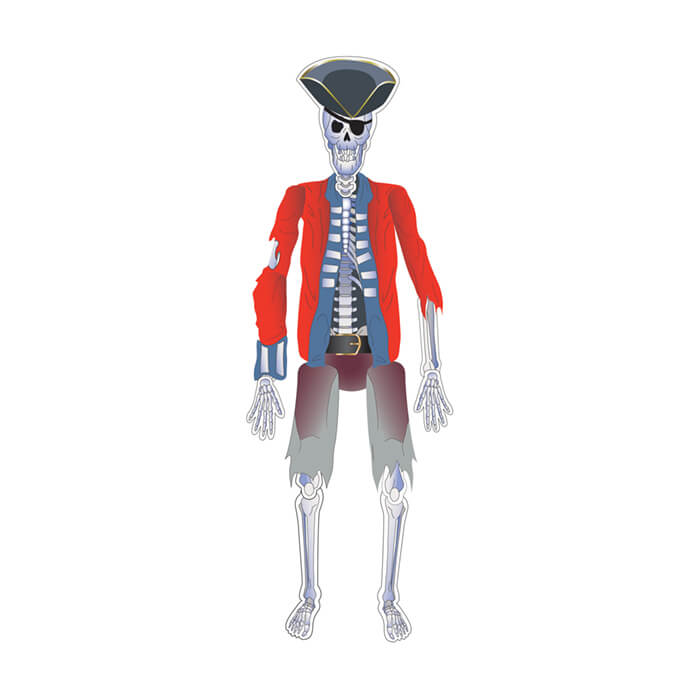 skeleton pirate decoration