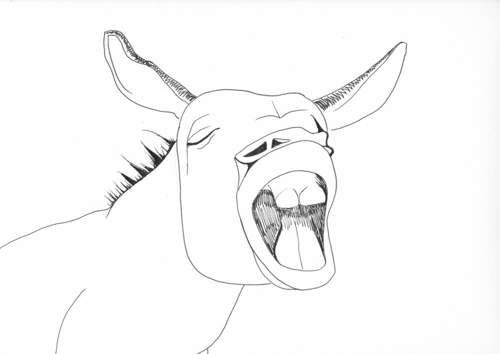 Pin the Tail Donkey