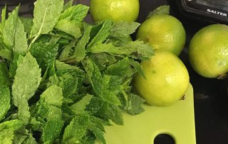 Best lime and mint cordial recipe